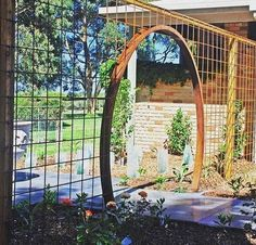 Moon gate reo mesh climbing frame, cheap affordable garden room divider hints for cultivating bonsai Unique Garden, Diy Garden, Garden Trellis, Dream Garden, Garden Projects, Garden Art, Garden Landscaping, Garden Design, Diy Trellis