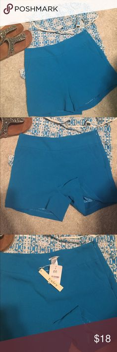 Blue Easley shorts Polyester blue shorts by Esley NWT! Beautiful with top pictures which is also posted in my closet Esley Shorts