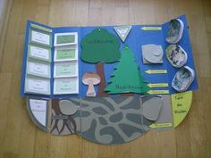 What is a Lapbook? A Scrap-Lapbook? Elementary Science, Elementary Education, Forest Animal Crafts, Early Intervention Program, Kindergarten Lesson Plans, Kids Behavior, Educational Programs, Interactive Notebooks, Primary School