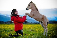 theequus:    My little angel :) by Birna H. on Flickr.