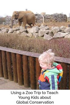 Using a zoo trip to teach kids about global conservation