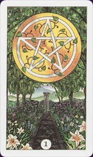 Learn the tarot card meanings and read a fictional narrative of your journey through the minor arcana! Explore the practical, prosperous, and hard-working suit of pentacles and enroll in a FREE intuitive tarot course! Ace Of Pentacles, Robin, Major Arcana Cards, Free Tarot, Tarot Card Meanings, Tarot Readers, Oracle Cards, Tarot Decks, Archetypes