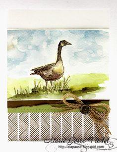 A La Pause: Wetlands à l'aquarelle