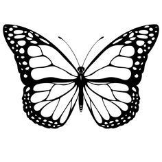 Print Monarch Butterfly Coloring Page coloring page & book. Your own Monarch Butterfly Coloring Page printable coloring page. With over 4000 coloring pages including Monarch Butterfly Coloring Page . Butterfly Outline, Butterfly Clip Art, Butterfly Pictures, Butterfly Template, Blue Butterfly, Printable Butterfly, Butterfly Stencil, Butterfly Wings, Butterfly Design