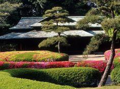 Azaleas at the Imperial Palace East Gardens, Tokyo, Japan Reproduction photographique par Nancy & Steve Ross sur AllPosters.fr