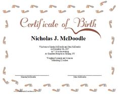 Certificate of Birth Printable Certificate Certificate Border, Birth Certificate, Printable Certificates, Birth Records, Baby Footprints, Printables, Pink, Blue, Print Templates