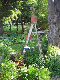 So cute. Want to have this one? Renovate your garden through using an efficient tool. Find it at http://rootassassinshovel.com/.