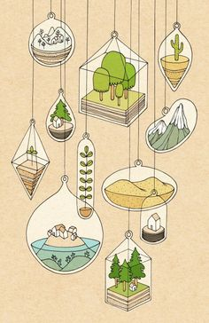Rose Wong - Illustration / Terrariums • ink and digital                                                                                                                                                                                 More