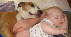 These Heartwarming Photos of Dogs Hugging Their Humans Will Make You Want to Smoosh Your Pup! Animals For Kids, Baby Animals, Cute Animals, Funny Babies, Funny Kids, I Love Dogs, Cute Dogs, Dog Pictures, Funny Pictures