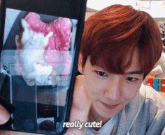 Baekhyun showing us pics from his phone gallery makes me happy  That Baekhee photo thoooo  #Bae