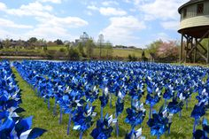 "Pinwheels for Prevention. In recognition of Child Abuse Prevention Month at @Lewis Ginter  Botanical Garden, more than 3,000 pinwheels have been ""planted"" in the Children's Garden along the lake edge. Each pinwheel represents a child in Virginia who has been served during the past year by Prevent Child Abuse Virginia's Healthy Families program. The pinwheels will be on display at the Garden until April 30."