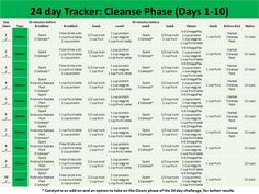 10 day cleanse instructions advocare information 10 day cleanse