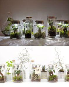Green Factory - Treeki / Équipé d'un système d'éclairage LED alimenté par un capteur solaire, la plante absorbe la lumière pour la convertir en énergie. Il suffira juste d'arroser et de tailler un peu ce ficus ginseng seulement deux fois par an.