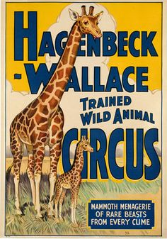 Vintage poster, Hagenbeck-Wallace Trained Wild Animal Circus