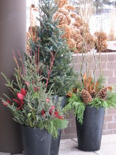 Long twigs & greenery in planters makes for easy front porch décor. Christmas Porch, Rustic Christmas, All Things Christmas, Christmas Holidays, Christmas Decorations, Christmas Ideas, Winter Shower, Advent, Seasonal Decor