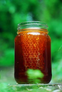 """Can you say, """"GORGEOUS""""??? Breathtaking, beautiful honey and honeycomb"""