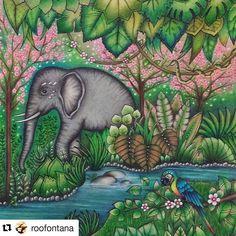 Perfeição! #Repost @roofontana with @repostapp Primeira parte concluída do Selva Mágica! #magicaljungle #selvamagicaoficial #johannabasford #inspiraçaojardimsecreto #jardimsecretotop #jardimsecretoinspire #desenhoscolorir #artecomoterapia #desenhosparacolorir #jardimsecretofans #viciodecolorir #terapianojardim