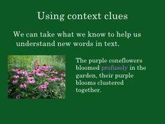 Week 2: Context Clues PowerPoint