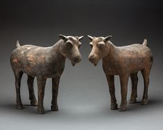"Pair of Han Terracotta Goat Sculptures - X.0413 Origin: China Circa: 206 BC to 220 AD  Dimensions: 11.75"" (29.8cm) high x 15.375"" (39.1cm) wide  Collection: Chinese Medium: Terracotta"