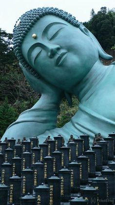 Sleeping Buddha, Nanzoin Temple, Fukuoka, Japan. ༻神*ŦƶȠ*神༺