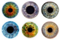 July | 2009 | The Eye Si(