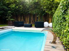 plantes exotiques pour décorer abords de la piscine