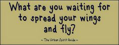 What are you waiting for, to spread your wings and fly?   #UrbanSpiritGuide #Fly #SpreadYourWings