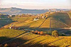 Barbaresco wine tours, winery tasting tour in Alba, Langhe, Piedmont