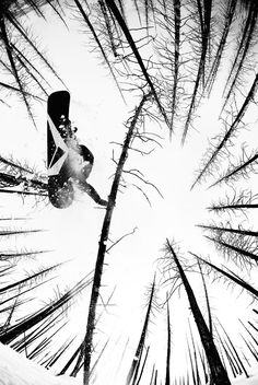 #Snowboarding in the forest