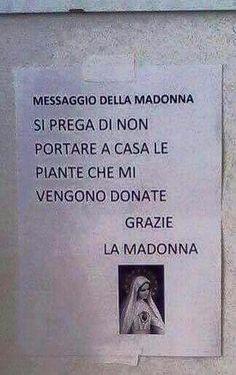Un messaggio della madonna!