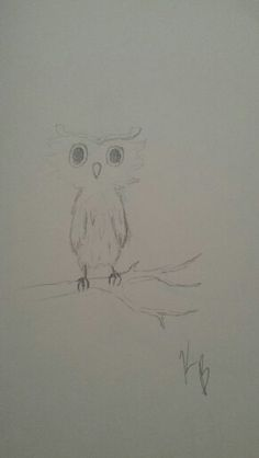 Little owl I did when I was bored.....
