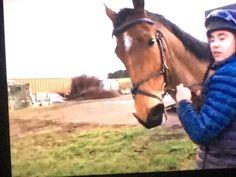 Dylan Thomas, Riding Helmets, Horses, Animals, Animaux, Horse, Animal, Animales, Animais