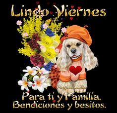 Viernes Gif, Good Morning Good Night, Betty Boop, Beautiful Day, Blessed, Animation, Spaniels, Ariel, Ms