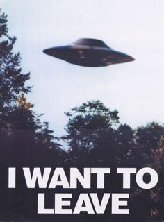 I want to...believe? No, I want to leave, please.