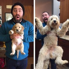 Adorable photos of dogs then and now. So cute to see how they turned out!
