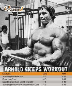 Arnold Schwarzenegger's Biceps Workout https://www.facebook.com/photo.php?fbid=663300037047121