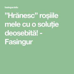 """""""Hrănesc"""" roșiile mele cu o soluție deosebită! - Fasingur"""
