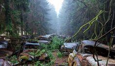Verlassene Orte – Autofriedhof in Chatillon (Belgien) fotografiert von Rosanne de Lange