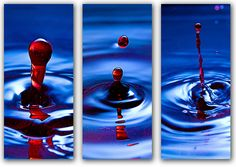 Color Story Ally Tobler Photography: Triptych Photography What Does a Home Inspector Do? Tryptich, Hobby Photography, Types Of Photography, Photography Projects, Photography Classes, Triptych Photography, Diptych, Digital Photography Classes, Triptych