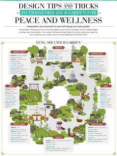 Feng shui applied to landscape design can improve well-being