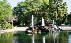 El Dorado Park, but where are the ducks?