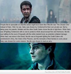 This Is One Of The Best Things I Have Ever Read About Nevilles Role