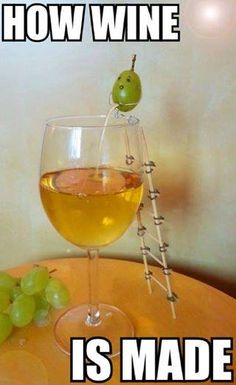 still laughing at how wine is made bahahaha!