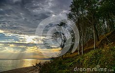 A forest and a shore with rays of light. Polish Baltic coast.