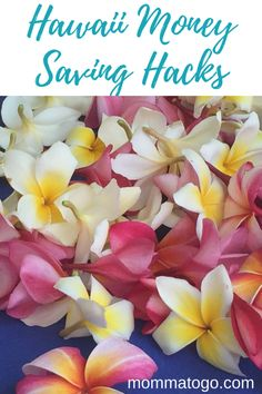 Hawaii Money Saving Tips. Tips for saving money when traveling in Hawaii. Help booking the best place to stay, rental car, activities and inter-island flights! #Hawaii #Maui #TravelHacks #MoneySavingTips #FamilyTravel Hawaii Vacation Tips, Hawaii Travel, Vacation Trips, Travel Usa, Hawaii Usa, Beach Vacations, Vacation Travel, Canada Travel, Travel Money
