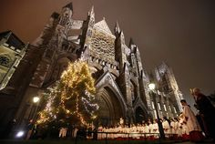 France | Christmas Trees from Around the World - Holidash News