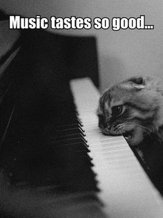 Well that would make an interesting piano lesson...| Piano Humor