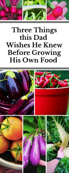 Learn the three things Erwin Ramos, a dad and Business IT Analyst, wishes he knew before he started growing his own food. You will LOVE his pictures – they are all so vibrant!