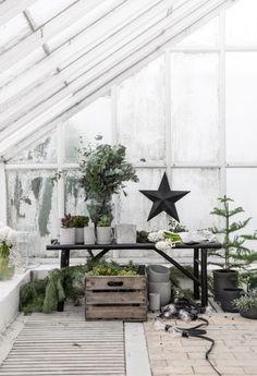 Christmas Styling Ideas