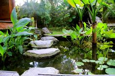 The trick behind any water feature is to provide continuous flow. Collect rain water to ensure you have constant source for water.  http://ift.tt/1necaoZ  #bali #balilandscapecompany #balilandscaper #bestinbali #garden #gardendesign #gardenideas #gardeninspiration #instagarden #landscape #landscapearchitect #landscapearchitecture #landscapedesign #landscapedesigner #landscapeideas #landscaping #taman #thebalibible #tropicalgarden #tropicalgardendesign #tropicallandscape #waterfeature #pond